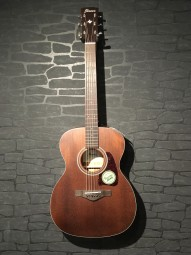 Ibanez AVC9OPN Artwood Vintage Thermo aged