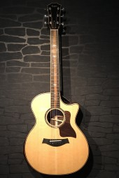 Taylor 814CE DLX Grand Auditorium, Case