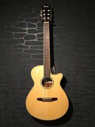 Ibanez AEG10NII-NT E-/A-Nylon Guitar