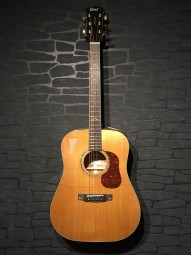 Cort Gold Serie D6 Dreadnought, aged Top, vollmassiv, Bag