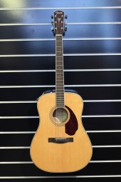 Fender PM-1 Standard Dreadnought NAT, w/c