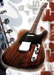 Vintage Art Guitar - Fender Rosewood Telecaster (1969)
