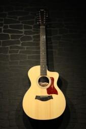 Taylor 254ce DLX 12-String, Natur, w/c
