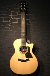 Taylor 714ce Grand Auditorium, Case