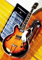 Vintage Art Guitar - Epiphone E-360TD/12 Riviera