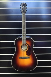 Fender PM-1 Deluxe Dreadnought SBST, w/c
