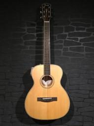 Fender PM-TE Travel Standard NAT w/c