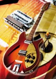 Vintage Art Guitar - Rickenbacker 360 Capri