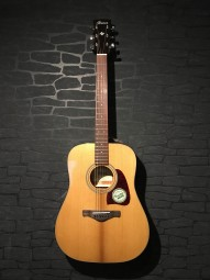 Ibanez AVD9NT Artwood Vintage Thermo aged